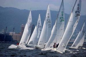 ヨット ドラゴン級全日本選手権
